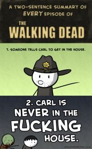 A summary of The Walking Dead!
