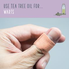 Tea Tree Oil For Warts  For plantar, flat, and common warts, tea tree oil can form part of an effective treatment. Place two to four drops of tea tree oil on the wart, and then cover it with garlic. Repeat nightly for up to three weeks.
