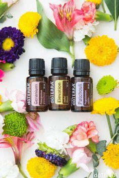 We love this fresh and floral diffuser blend! 4 drops Geranium, 3 drops Elevation, and 3 drops Patchouli. Enjoy!