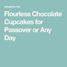 Flourless Chocolate Cupcakes for Passover or Any Day