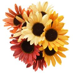 Beautiful fabric sunflowers burst forth in all the vibrant colors of the harvest! With flexible wired stems that let you bend and shape to suit your needs, they're a wonderfully colorful additio