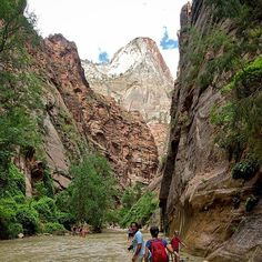 Zion National Park Unlike anywhere else #nature #landscape #river #water #mountains #cliff #canyon #zion #zionnp #np #nationalpark #zionnationalpark #adventure #Utah #explore #geology #hiking #hike #love_nature #outbackcollective #summer #southwest #sw #travel #wilderness #trail