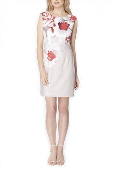180.00$  Buy here - http://vikqv.justgood.pw/vig/item.php?t=p0auqy31409 - Tahari - Rose-Print Pique Sheath - Ivory Beige Red