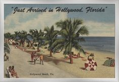 Hollywood Beach, Florida - View of Beach - Vintage Halftone Giclee Art Print, Gallery Framed, Silver Wood), Multi Hollywood Beach Florida, In Hollywood, Vintage Hollywood, Old Florida, Vintage Florida, South Florida, Affordable Wall Art, Old Postcards, Cool Posters