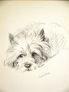 By Lucy Dawson : CAIRN TERRIER