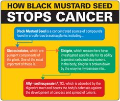 8 Best Mustard Seed Benefits images in 2015 | Healing herbs, Health