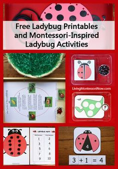 Free Ladybug Printables and Montessori-Inspired Ladybug Activities by Deb Chitwood, via Flickr