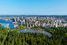 Startups and Fortune 500 companies alike are rapidly setting up offices with skilled employees just across the border in Vancouver, Canada. Stanley Park Vancouver, North Vancouver, What A Country, Immigration Canada, Across The Border, Central Park, Cape Town, British Columbia, Bangkok