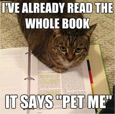 """I've already read the whole book, it says """"pet me."""" (If only that was the answers to the exam... lol!)"""