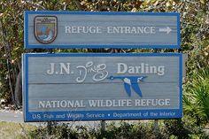 J. N. Ding Darling Nat'l Wildlife Refuge  Sanibel Island Florida