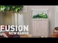 FUSION New Range - YouTube