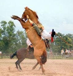 Cowboy getting vertical....