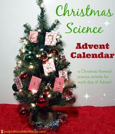 Christmas Science Advent Calendar - a Christmas themed science activity for each day of Advent