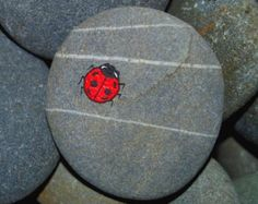 Tiny Hand Painted Ladybird Ladybug on a Stone Pebble