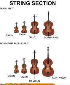 Or as I see it... Violin, Cello, Double Bass, and the most awesome instrument ever... The Viola!!!!!!!!!!!!!!
