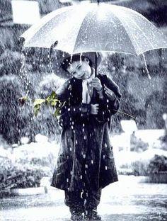 In the Rain - Kim Anderson calendar