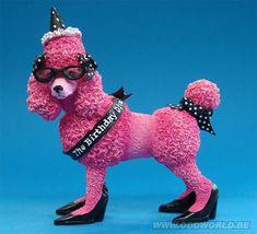 Happy Birthday Roze Poedel Hond Beeld