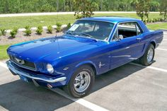 This Acapulco Blue 1966 Mustang hardtop has a engine under the hood. Acapulco Blue is a 1967 Mustang color. There were three other shades of blue offered on the standard 1966 Mustang and a fourth color exclusive Chevy Diesel Trucks, Chevrolet Trucks, Ford Trucks, 1957 Chevrolet, 4x4 Trucks, Chevrolet Impala, Lifted Trucks, 1966 Ford Mustang, Mustang Cobra