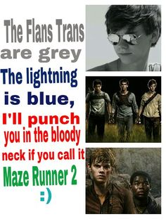 Read Best Poem Ever! from the story Maze Runner Memes by blythe_porter (Blythe Porter) with reads. The Flat Trans are grey, The light. Maze Runner Quotes, Maze Runner Funny, Maze Runner Trilogy, Maze Runner The Scorch, Maze Runner Thomas, Maze Runner Movie, Maze Runner Series, Minho, The Scorch Trials