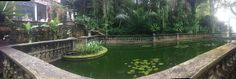 A pond within the breathtaking grounds of Kaliandra eco resort