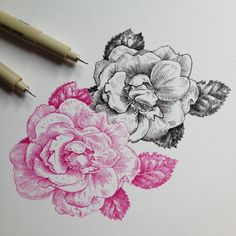 If you love the look and feel of wood, you shoul… Merian, Plant Painting, Art For Art Sake, Creative Thinking, Botanical Illustration, Disney Art, Graphic Art, Graphic Design, Doodle Art