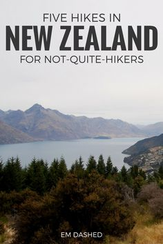 Have limited hiking experience and wondering if a trip to New Zealand is really worth it? Here are five stunning hikes in NZ that are perfect for those who don't hike often but still want to enjoy this country's amazing natural beauty. Featuring walks in Kaikoura, Queenstown, Taupo, and more. | #NewZealand #Hiking