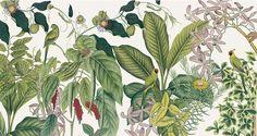 Tendance botanique : Panoramique Andaman (Anambo)