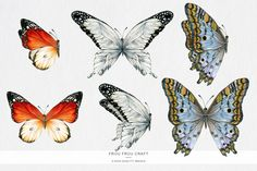 Butterfly ClipArt Watercolor Butterflies by froufroucraft on Etsy