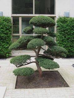 japanese garden design Beautiful Low Maintenance Front Yard Garden and Landscaping Ideas 40 Zen Garden Design, Japanese Garden Design, Landscape Design, Landscape Steps, Japanese Landscape, Japanese Style, Front Yard Design, Front Yard Landscaping, Landscaping Ideas
