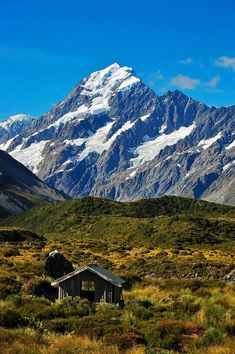 Aoraki/Mount Cook South Island, New Zealand) Places To Travel, Places To See, Beautiful World, Beautiful Places, New Zealand Landscape, New Zealand South Island, Flora, New Zealand Travel, Beautiful Landscapes