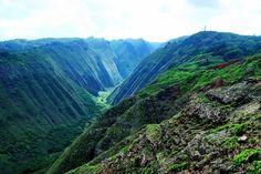 Overlooking Lush Naio Gulch on Lanai, Hawaii