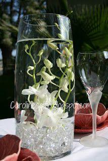 Submerged Dendrobiums sooo pretty