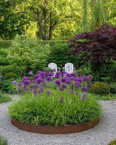 Garden Design Plans, Garden Landscape Design, Purple Garden, Garden Oasis, Garden Photos, Easy Garden, Growing Flowers, Landscape Lighting, Garden Styles