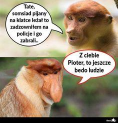 BESTY.pl - Bezcenna reakcja Janusza Very Funny Memes, Wtf Funny, Polish Memes, Weekend Humor, Funny Mems, Meme Lord, Best Memes, Fnaf, Funny Animals
