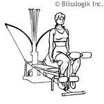 Bowflex exercises Bowflex Dumbbells, Bowflex Workout, Dumbbell Workout, Bowflex Ultimate, Bowflex Blaze, Seated Yoga Poses, Couch Workout, Exercises, Health