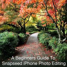 A Beginners Guide To Snapseed iPhone Photo Editing: http://iphonephotographyschool.com/snapseed-editing-app/