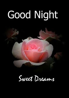 Good Night Images – Nothing can be as great as having some attractive Good Night Images Wallpaper HD Night Pictures, Night Photos, Pictures Images, Good Night Hindi, Good Night Quotes, Good Night Wallpaper, Good Night Sweet Dreams, Shayari Image, Nighty Night