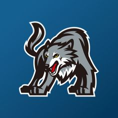 Minnesota Timberwolves identity concept