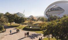 Hoy damos una vuelta por los Jardines del Turia en #Valencia