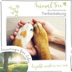 Kennst du Animal Tree schon? Du findest unsere Idee auch so schön wie wir? Dann erzähle gerne anderen von uns. Vet Office, Memories, Pet Dogs, Animales, Simple, Nice Asses
