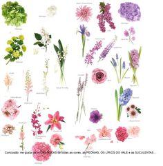 Flores + cores --> o que eu gostei