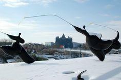 Les sculptures de Toutain sous la neige (Futuroscope).
