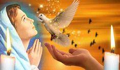 """Se spune ca astazi, a doua zi de Rusalii Cerul este deschis si rugaciunea noastra ajunge mai usor la Bunul Dumnezeu. Rugăciunea rostită în cea de-a doua zi de Rusalii curăță sufletul de păcate și te liniștește sufletește.   Iata ce trebuie sa rostesti!(textul rugaciunii)  """"Împărate Ceresc, Preab Bird, Mai, Animals, Animaux, Birds, Animal, Animales, Animais"""