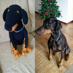 Dobermann Amigurumi  Saiki versão amigurumi 😁 o Doberman mais legal do mundo 💗 #doberman #dobermann #dogperson #doglover #dobermansofinstagram #cachorro #pet #petlover #dog🐶 #meupet #dogsofinsta #dogdofig #amigurumilove #amigurumi #amigurumibrasil #bonekikinhos #crocheteveryday