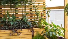 Studio Earthbox brings to you a fresh, functional and creative approach to urban container gardening. We design and create handcrafted and artisanal garden décor products to make your outdoor spaces more enjoyable and meaningful. From unique space savers to elaborate accent pieces, we help you compose that perfect space - an oasis for your soul!