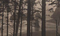 La exposición 'Los murmullos del bosque' trae a España por primera vez las fotografías del japonés Shikama