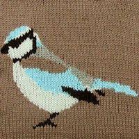 Garden Bird Intarsia Chart To Download | Eskimimi Makes