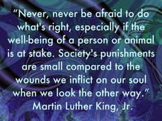 MLK- great one