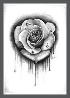 Fine art print of an original dripping rose pencil drawing by Bre Armenta. All prints are signed. Print size is 5x7in on heavy duty paper.