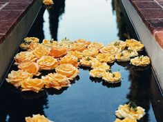Oprah Hosts the Perfect Garden Party: Photo: James Merrell. Sublime Tranquility: Celebrity and Michelangelo roses from Belle Rose Farm float in the aqueduct.